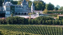 bordeaux-vineyard