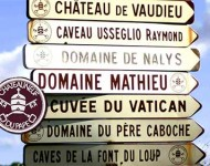 Chateauneuf du Pape vineyards, Rhone