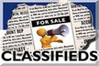 Classified Detail Information Page