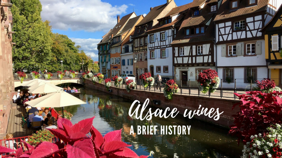 Alsace wines a brief guide