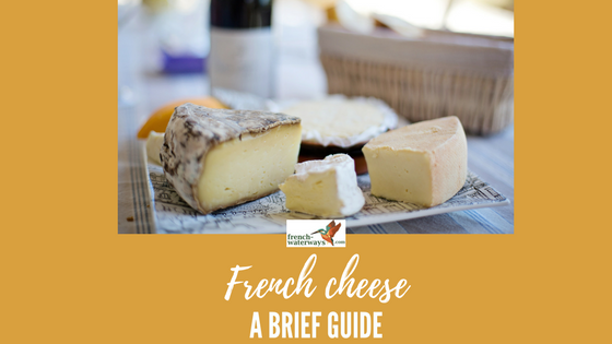 Dictionary Of The Best French Cheese Best Cheeses In France French Waterways