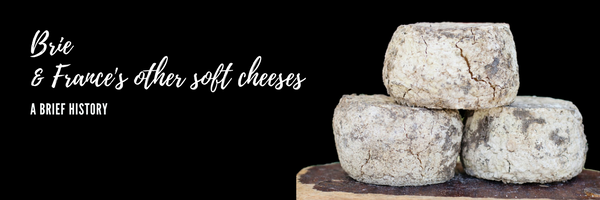 Brie and other soft cheeses of France