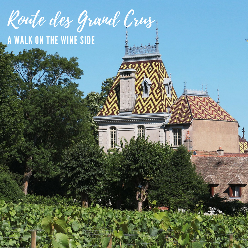Route des Grands Crus - take a walk on the side in Burgundy. The Route des Grand Crus is one of the biggest and best wine trails that wends its way from Dijon to Santenay through world renowned vineyards.