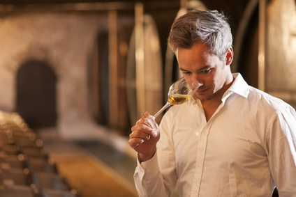 Professional winemaker smelling a glass of white wine in his traditional cellar surrounded by wooden barrels